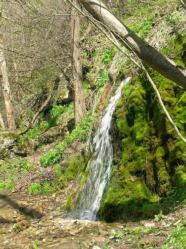 Парк птиц, водопад Радужный, калужская область, достопримечательности,походы выходного дня, Спас-Прогнанье.